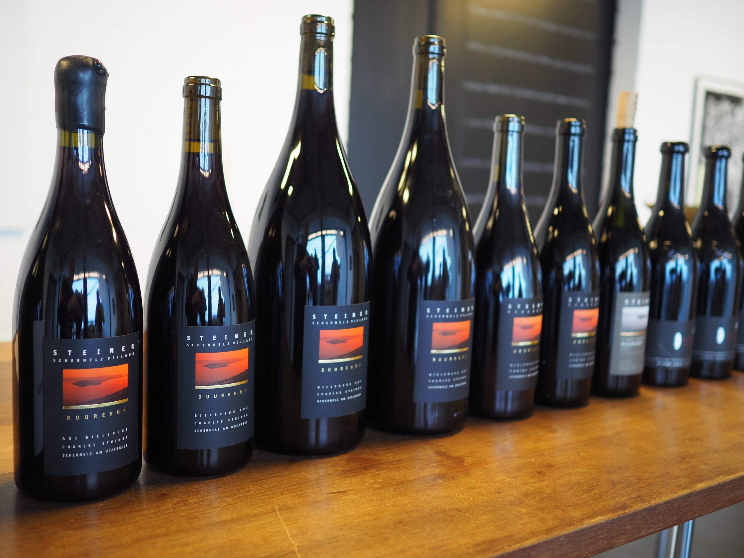 Die besten Pinot Noir Lageweine vom Weingut Steiner